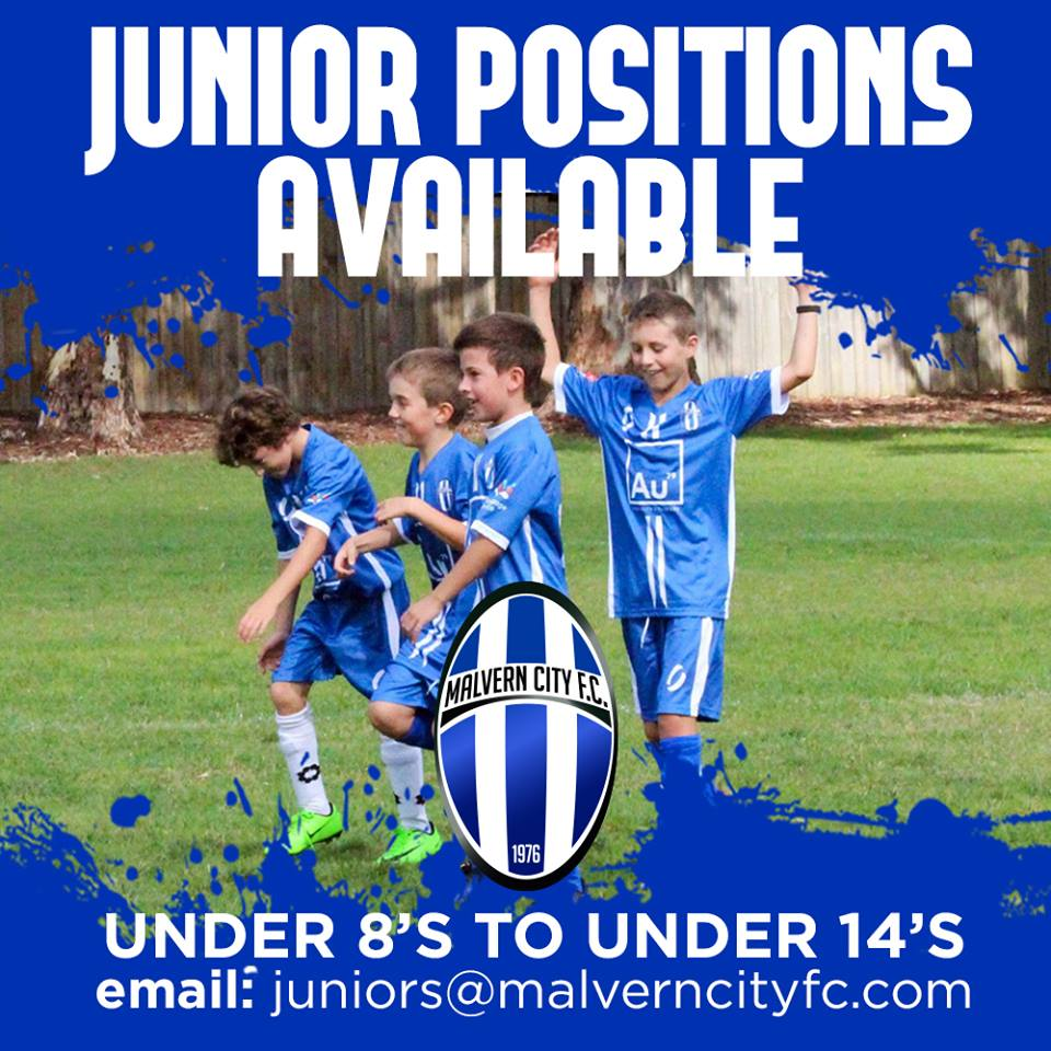 Junior Positions Available